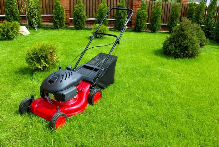 quiet lawn mower