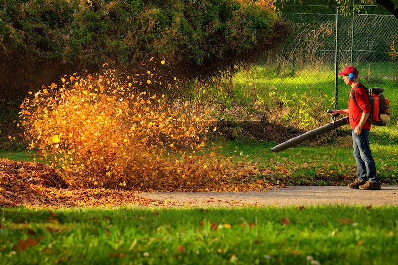 The 5 Quietest Leaf Blowers in 2021: Reviews & Buying Guide