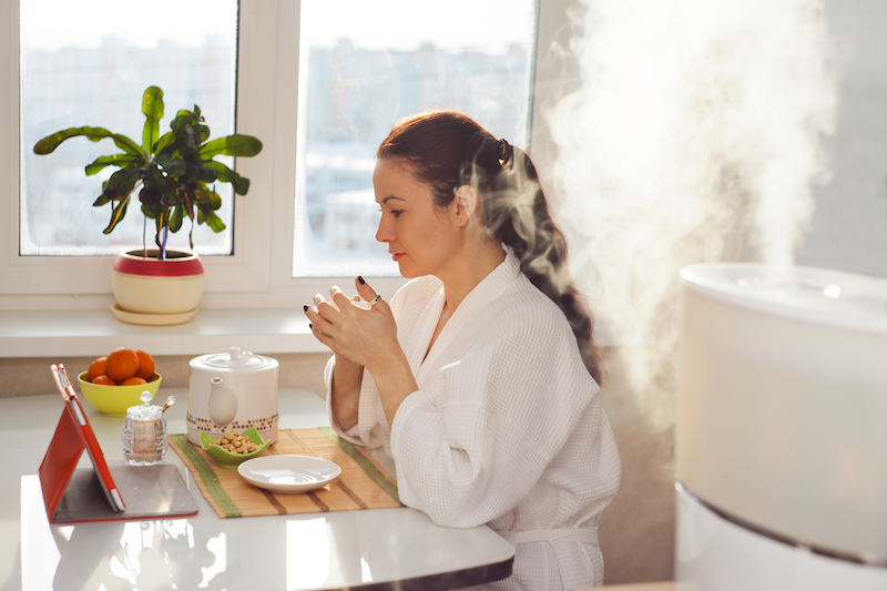 The 6 Quietest Humidifiers in 2021: Reviews and Buyer's Guide